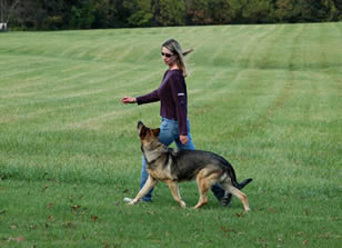 Mirga Zubkus heeling with a German Shepherd dog