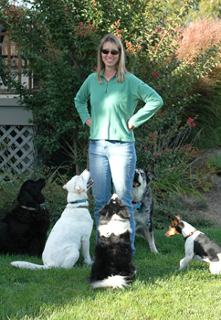 Mirga and a group of well-behaved dogs